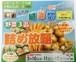 29.3.10~12佐伯様見学会野菜詰め合わせダンボールカバー